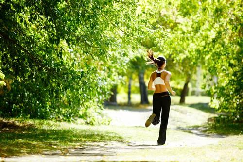 A scientific workout program