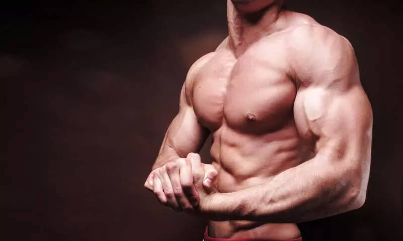 Best 6 Chest Workouts for beginners to pro level.