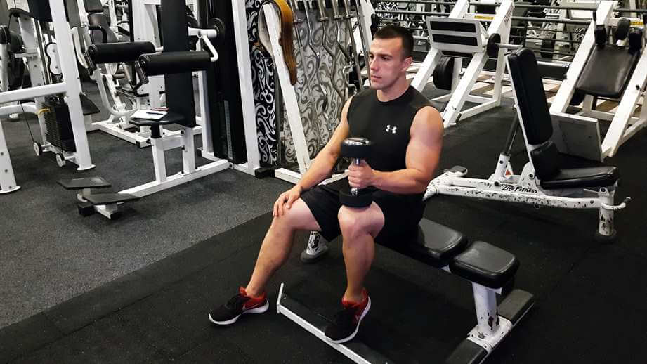 Dumbbell Calf Raise Seated Single Leg