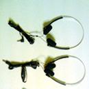 Audio headphones for patients ( 5 models )