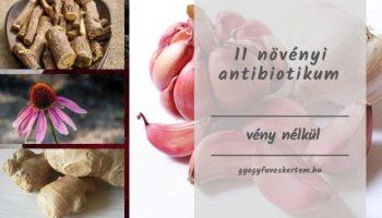 Visszérbetegség: már gyógyszerrel is hatékonyan kezelhető! (x) - EgészségKalauz