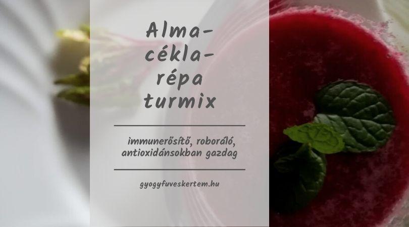 alma-répa-cékla turmix