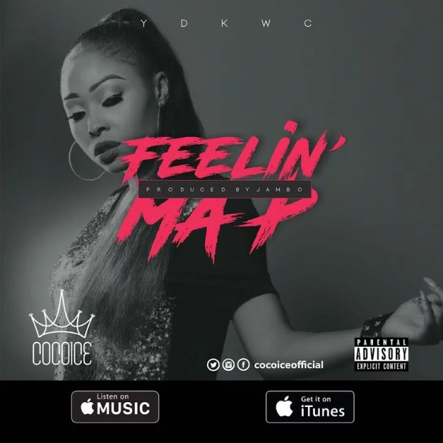 CocoIce -- Feelin Ma P Cover Art