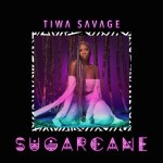 Have You Ever Forget What It Feels Like to Be In Love, Tiwa Savage Will Remind You In Her Sugarcane EP