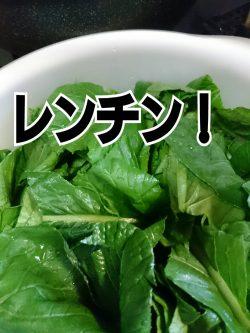 小松菜レンチン!