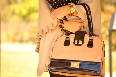 Black and Beige Purse