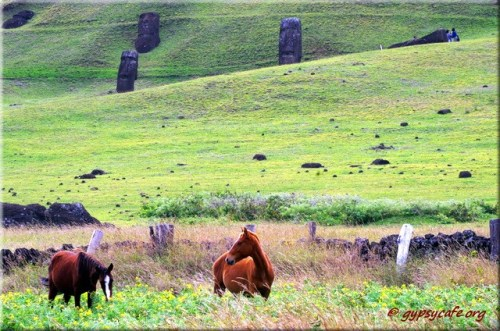 Horses at Rano Rarako - Moai behind them Rapa Nui - Easter Island