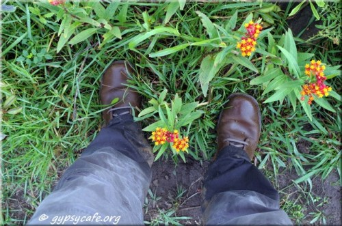 Flowers and Boots - Hiking Easter Island
