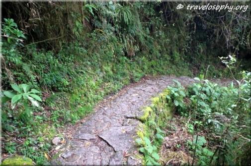 Inca Trail View 24
