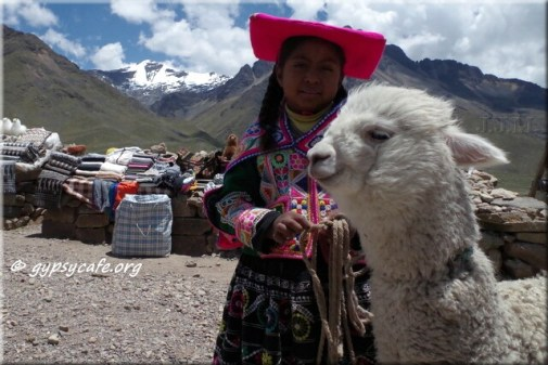 Peruvian Girl with Alpaca