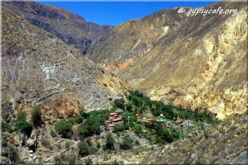 Colca Canyon Oasis - Peru