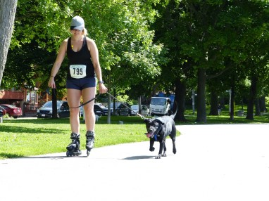 Woof fit 2015 206