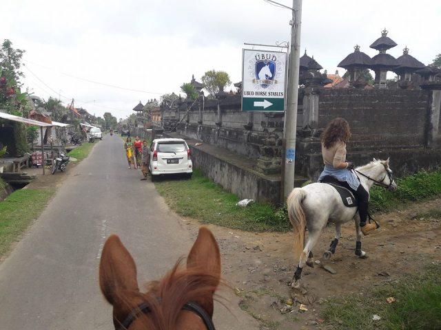 horse riding ubud bali