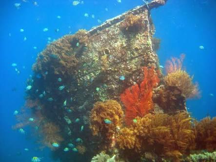 japanese shipwreck amed bali