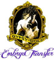 Gypsy Gold Embryo Transfer Program
