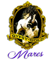 Gypsy Gold Mares