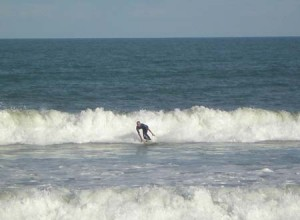 Surfer web
