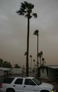 Winter Storm Apache Junction web