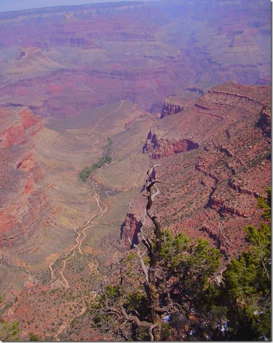 Grand Canyon view 3