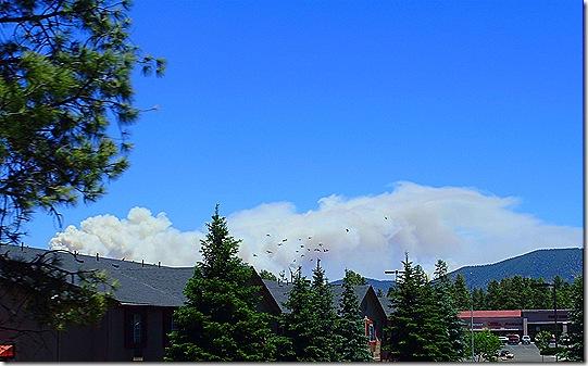 Flagstaff fire