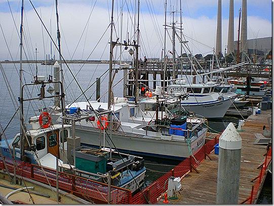 Morro Bay fishing boats