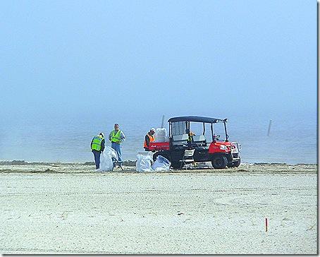 Beach cleanup crew