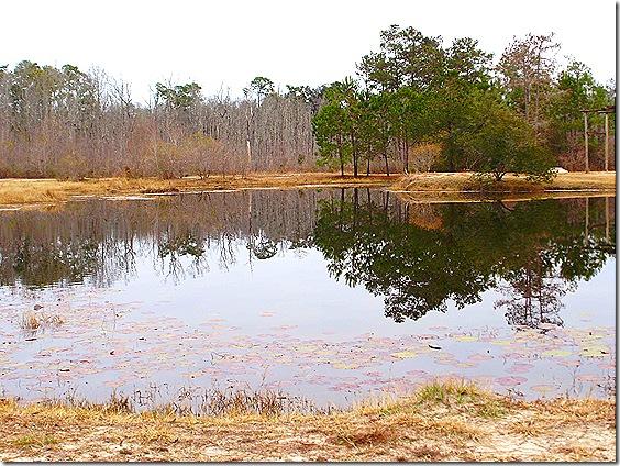 Magic River pond 3