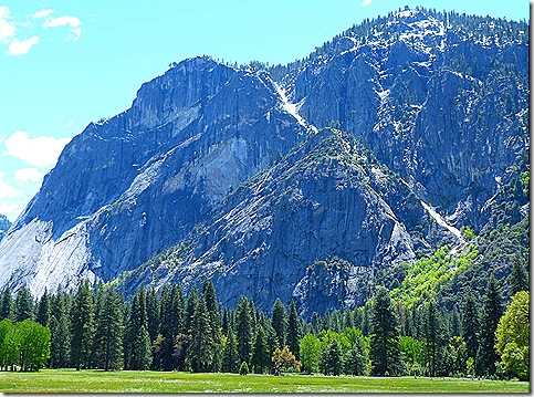 Mountain Mmeadow View