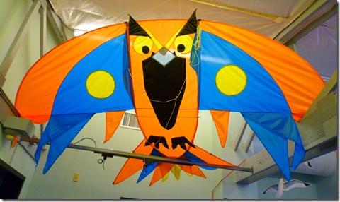 Bird kite 2