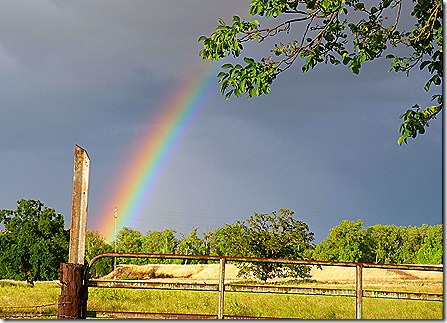 Rainbow fence post