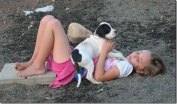 Hailey dog