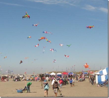 Kite festival Wednesday 2