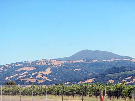 Golden Hills small