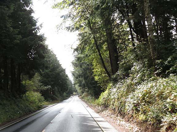 Narrow US 101