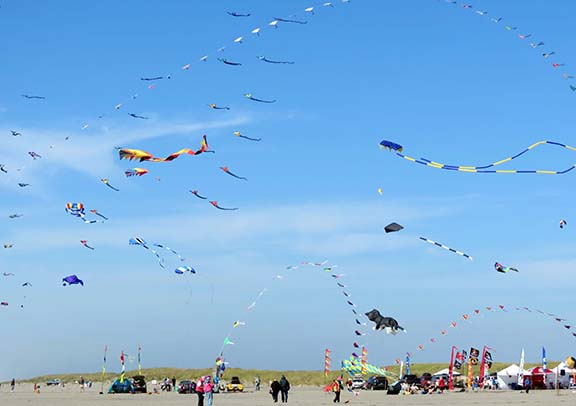 Sky full of kites small