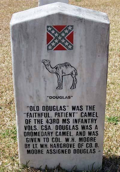 Camel headstone