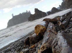 Ruby Beach, Olympic Peninsula, WA