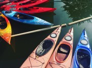 Charles River Canoe & Kayak, Cambridge, MA. 2016 summer