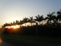 Sunset Near Miami