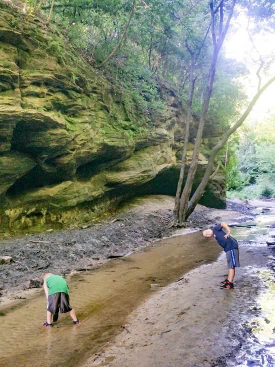Forward into 2018, at Matthiessen State Park Creek