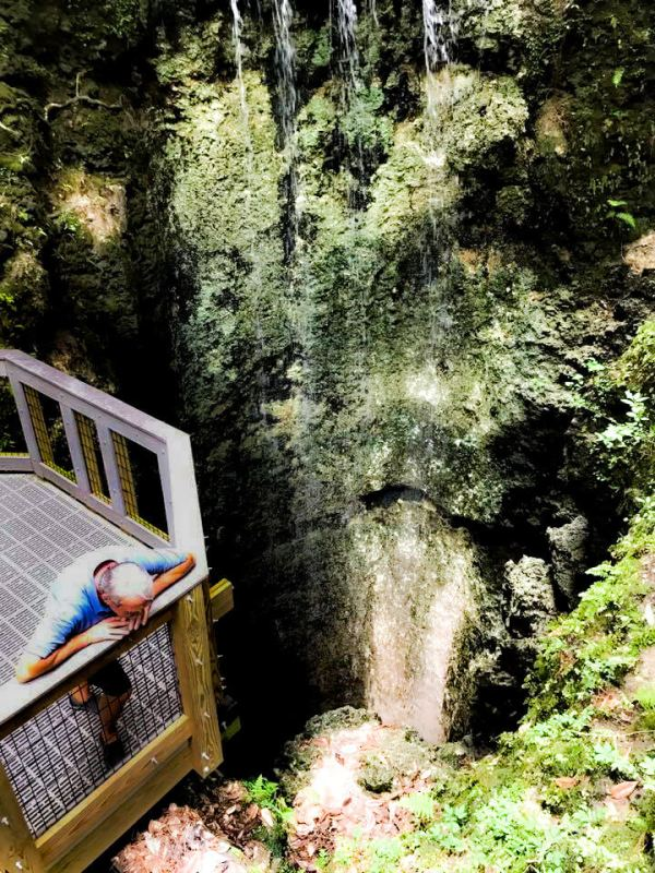 Over the Edge of the Sink Hole, Falling Waters State Park, Florida.