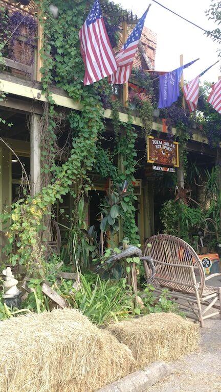 carbondale, south, southern Illinois, Illinois, Makanda, shops, art, art grotto, garden, dave, rainmaker