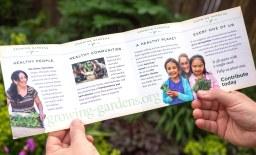 "Growing Gardens ""seed packet"" brochure (interior panels) | Creative direction by Matt Giraud, Gyroscope Creative"