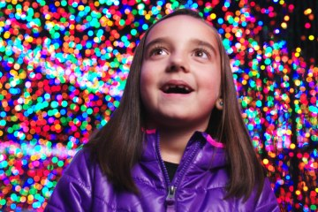 'Zoolights 2013' from Gyroscope Pictures
