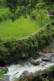 Jau Banaue man atrodė labai gražu, nors žinojau, kad didysis grožis laukia nuvykus į Batad.