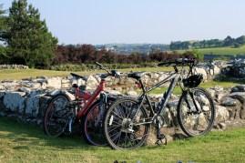Du gražuoliai dviratukai džiaugėsi ištraukti į dienos šviesą.