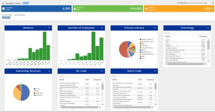 The AccountView Dashboard provides firmographic and technographic segmentation analysis.