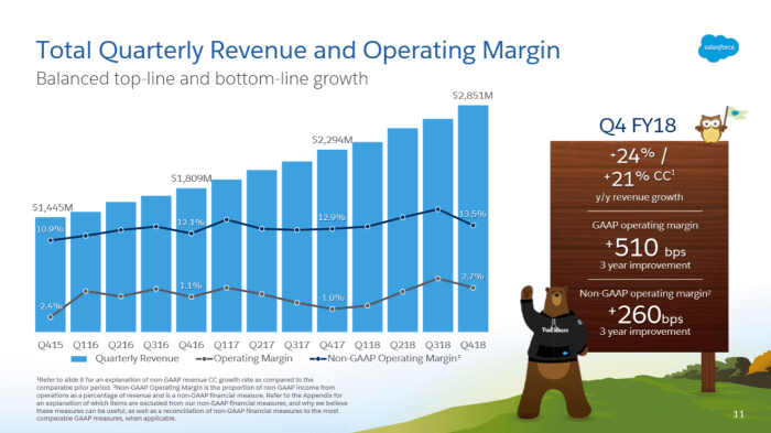 Salesforce Maintained its growth trajectory in Q4 2018 (Source: Saleforce.com).