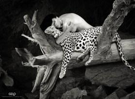 Photocreation: Gonzalo Villar - Model: Anna Averina Photo of model: Gosha Gudvin