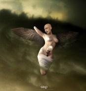 Ave Fenix by Gonzalo Villar